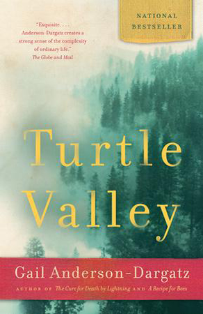 turtle valley large